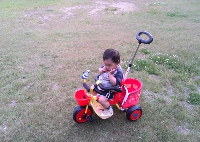 三輪車にのる息子