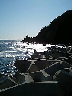 逢井漁港のテトラ
