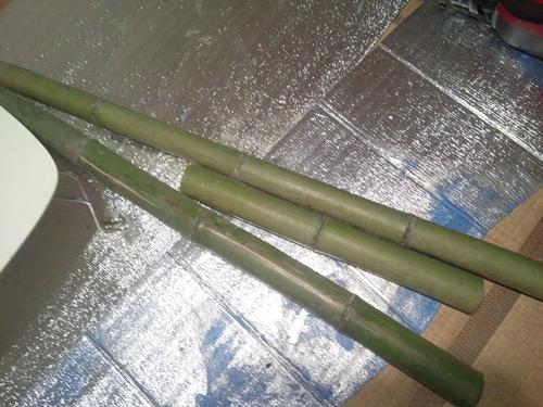 竹をもらいました